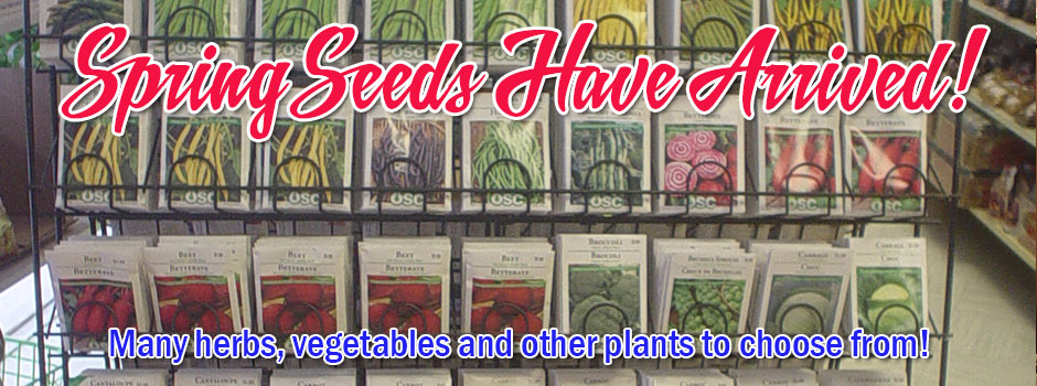 Spring Seeds for your garden!